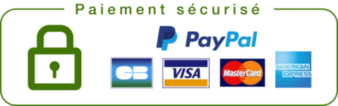 paiement_securise_grande_3765de50-b3f4-45b2-8f23-4fbc4e5ed76b_large_copie_0